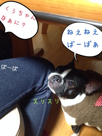 fc2blog_20140124134047d3a.jpg