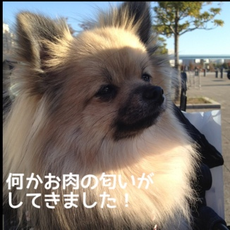 fc2blog_201311291907340fe.jpg