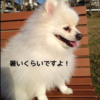 fc2blog_20131206201553b0a.jpg