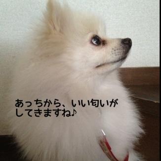 fc2blog_20131211204648da0.jpg