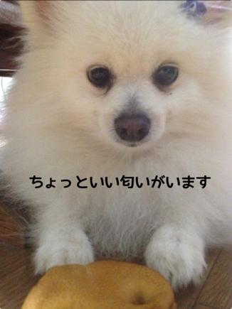 fc2blog_20131214204016747.jpg