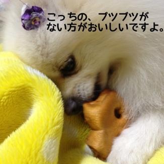 fc2blog_2013121619444892c.jpg