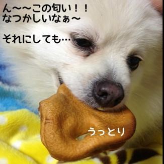 fc2blog_20131216194649d49.jpg