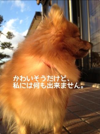 fc2blog_20131219213216e56.jpg