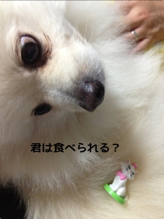 fc2blog_201312201958543e2.jpg