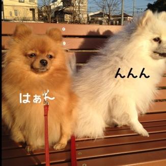 fc2blog_201312212034365ca.jpg