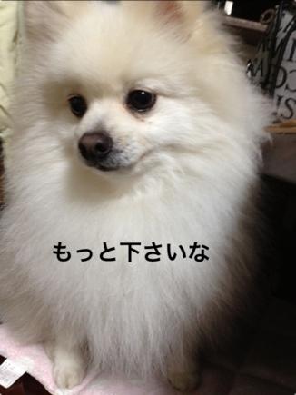 fc2blog_2013122619134043d.jpg