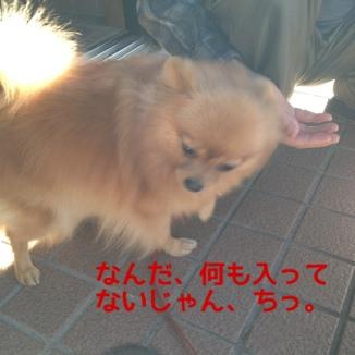 fc2blog_20140102233113bb7.jpg