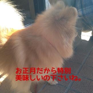 fc2blog_20140102233136f68.jpg