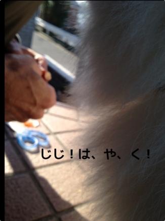 fc2blog_20140102233400ae5.jpg