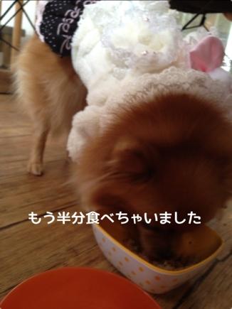 fc2blog_201401072116552a1.jpg