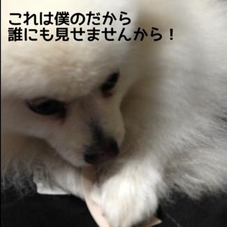 fc2blog_20140111135200e27.jpg