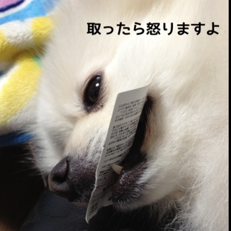 fc2blog_20140111141319b30.jpg