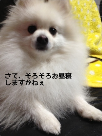fc2blog_201401121906153be.jpg