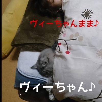 fc2blog_20140116214004051.jpg