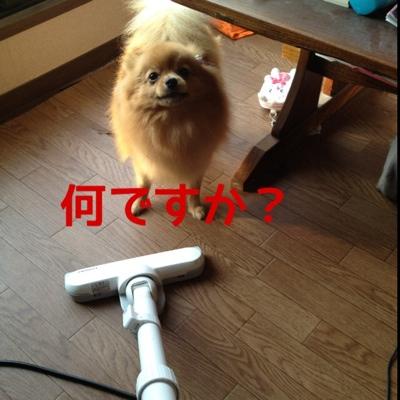 fc2blog_20140116214732039.jpg