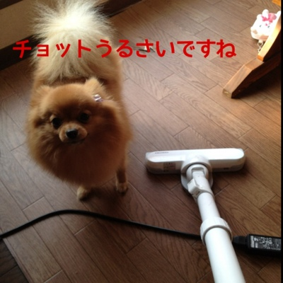 fc2blog_20140116214810696.jpg