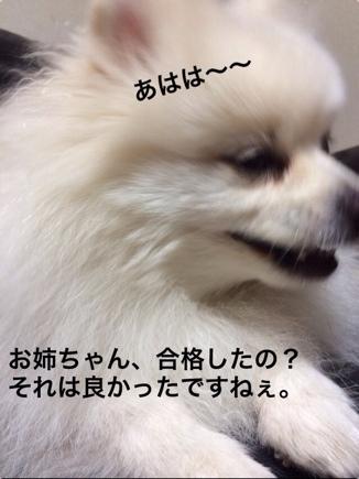 fc2blog_201401212023496e0.jpg