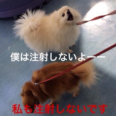 fc2blog_20140124194156f0e.jpg