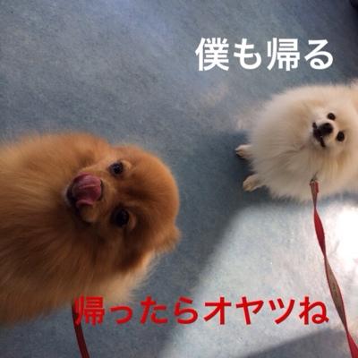 fc2blog_20140124194538936.jpg