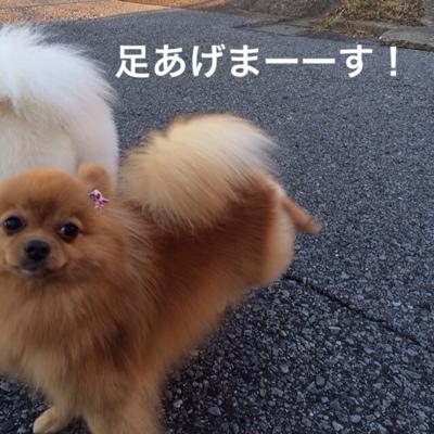 fc2blog_2014012517392477c.jpg