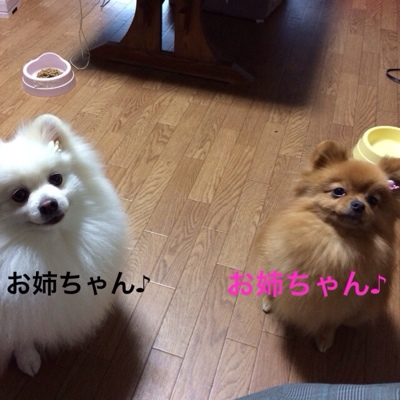fc2blog_20140204223209b16.jpg