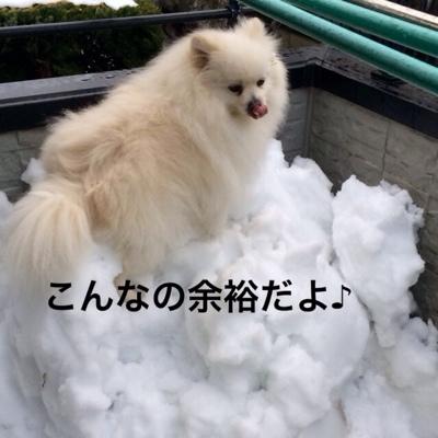 fc2blog_20140219192942573.jpg