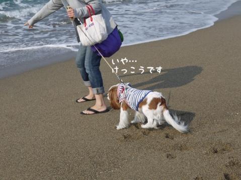 fc2blog_2013051522483129e.jpg