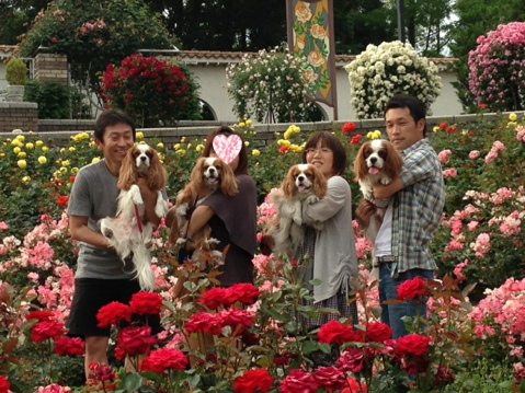 fc2blog_201306061659299db.jpg