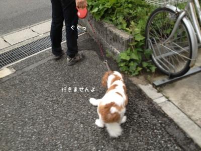 fc2blog_20130707135008cb5.jpg
