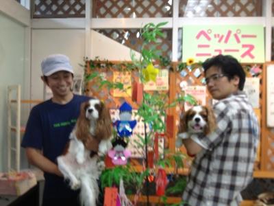 fc2blog_20130707140722526.jpg