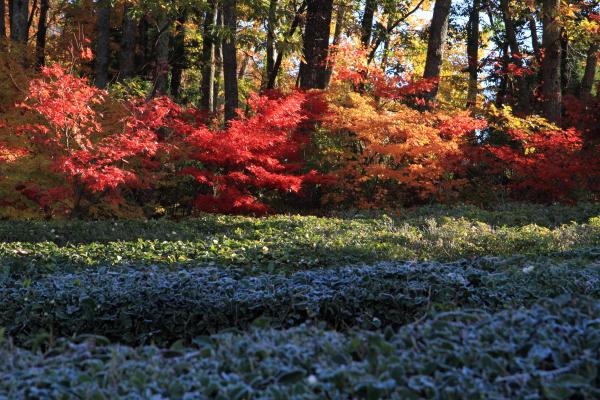 2012-11-25_0472.jpg