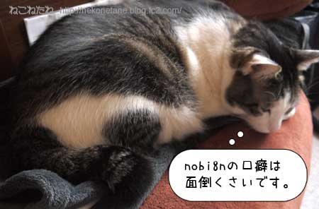 nobi8nの口癖は面倒くさいです。