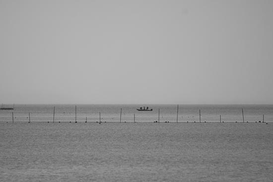 奥琵琶湖3-1