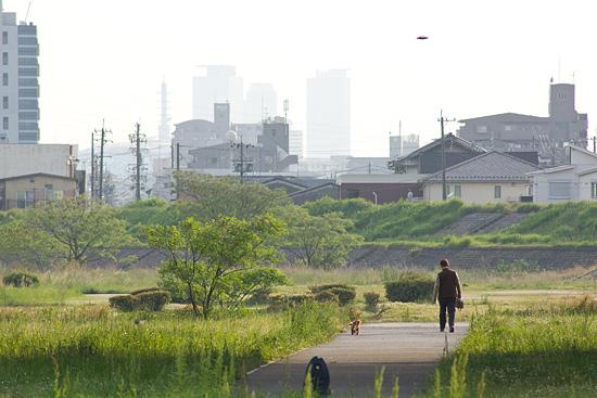 矢田川河川敷-5