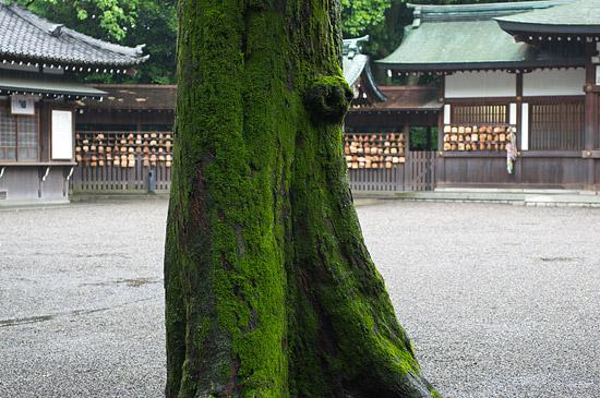 熱田神宮-11