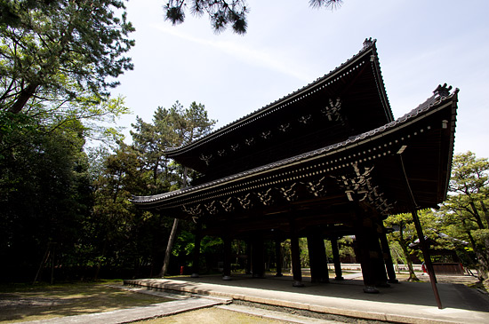 妙興寺-3
