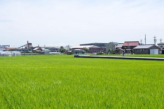 木曽岬町2-6