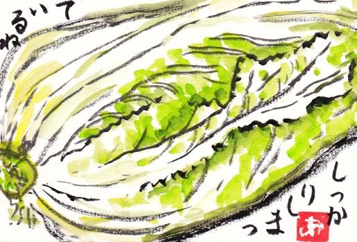 白菜IMG_0003