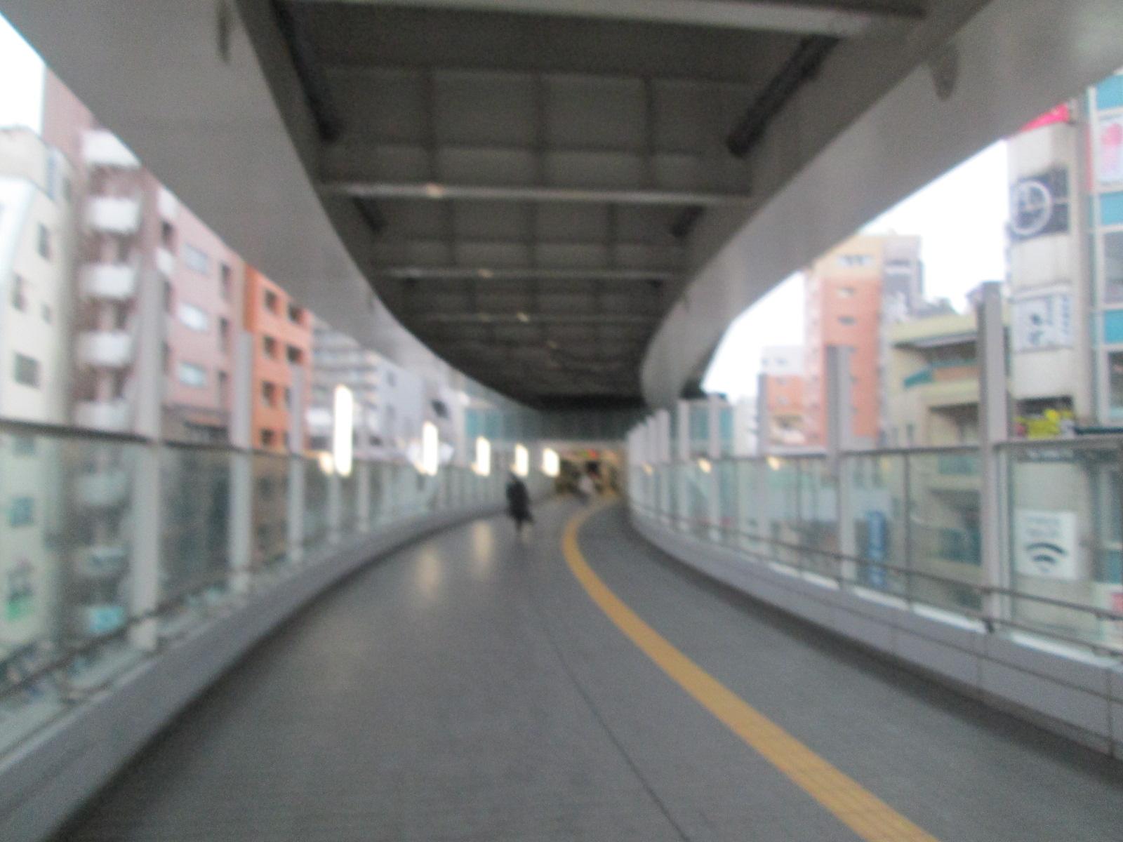 IMG_9110.jpg