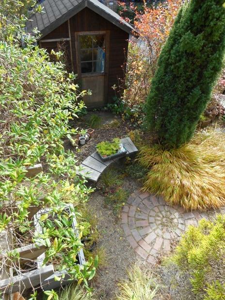 my-garden 094