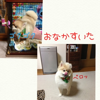fc2blog_20131210214619076.jpg