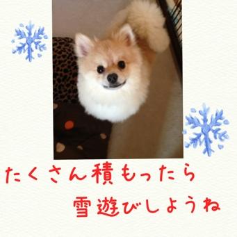 fc2blog_2013121521375493d.jpg