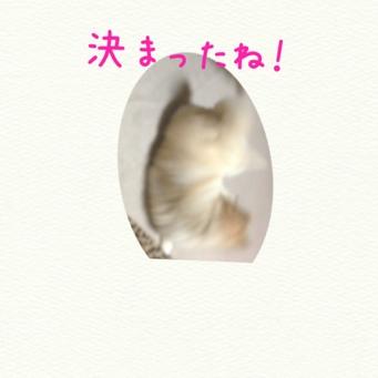fc2blog_20131216171329b20.jpg