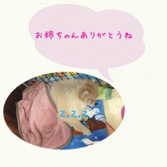 fc2blog_20131218214919a46.jpg