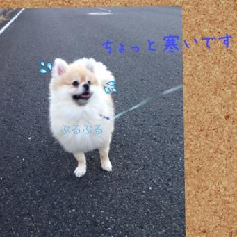 fc2blog_20140109185044e42.jpg
