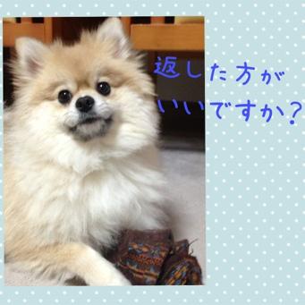 fc2blog_201401101720152f6.jpg
