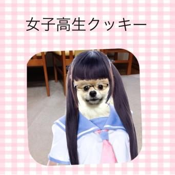 fc2blog_20140116225244af4.jpg