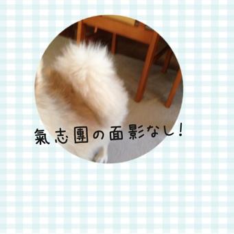 fc2blog_20140117204529ed1.jpg