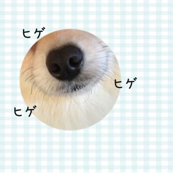 fc2blog_20140117204550314.jpg